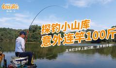 《白条游钓》鱼情好到吓人,白条半天就能钓100多斤!