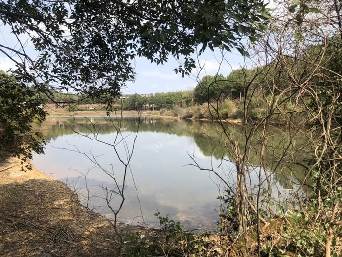 老吳釣魚場