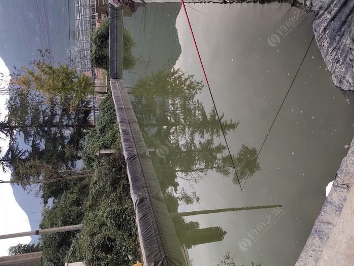 渔家乐园钓场