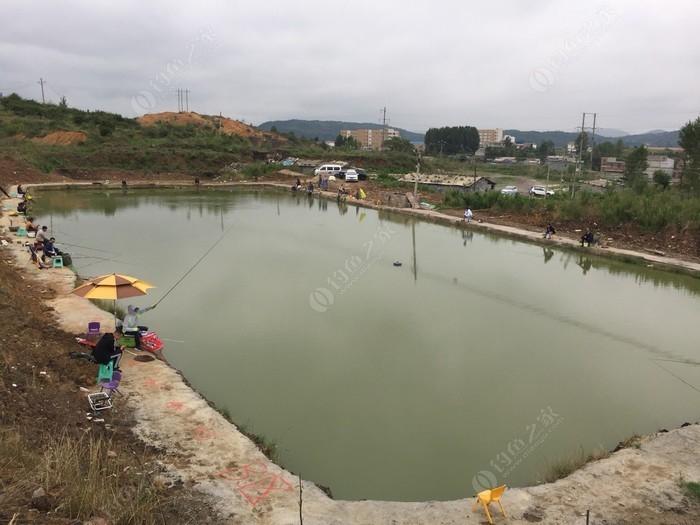 砖瓦厂鱼塘