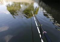 淺水無草該如何進行做釣!