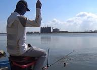 《麥子釣魚》這平底水庫的魚情也太給力,接連上魚還不停雙飛