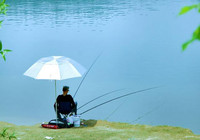 晴天環境下作釣的差異問題!