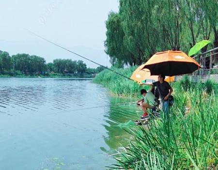 高温天气也挡不住钓鱼人的脚步!