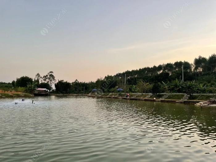 水照映海钓生态园