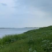 老囔着岸边好多草鱼吃草却钓不到的兄弟有福了
