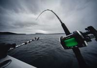 筏竿釣實戰技巧