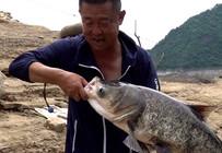 《游钓中国6》第25集 水库抛竿浮钓鲢鳙 阵雨难挡巨物连竿
