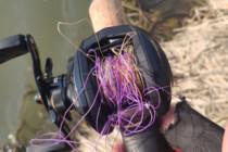 路亚新手从装备到上鱼过程详细分享