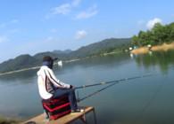 《麦子钓鱼》游钓太平湖第二日 开竿中鱼