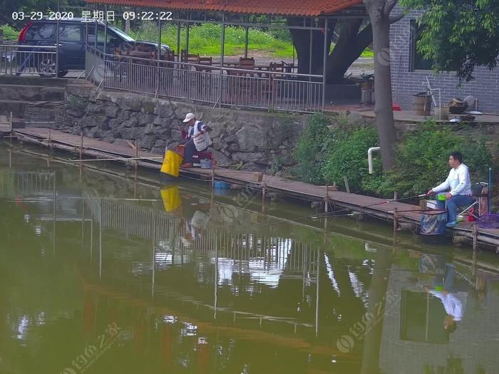 桃子休闲钓鱼场