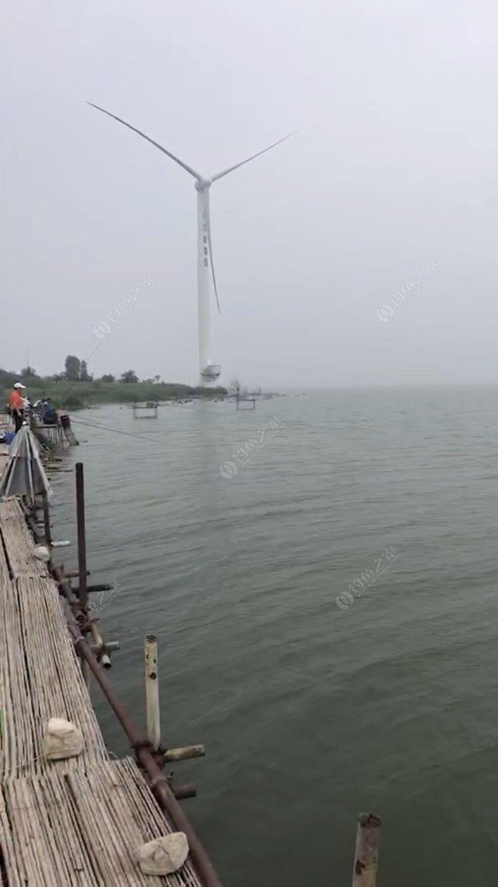 官厅水库岸边 钓鱼人很多 下游生态补水 水位下降 还是适合游玩的