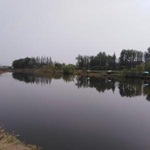 竹根滩千千钓场