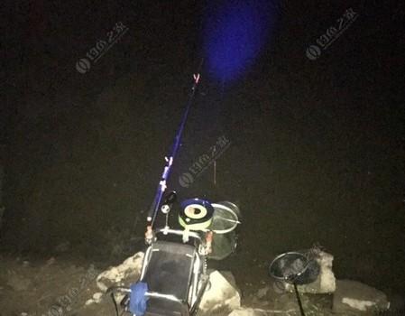 溫榆河未來科學城段夜釣大板鯽 強走水