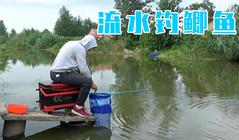 《緣魚》流水河底釣鯽魚,魚漂有動作立馬提竿,水面不停的炸窩!