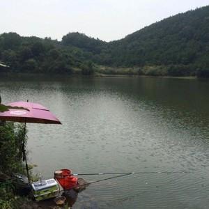 五柳水库天气预报