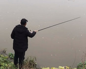 《谷麥釣手石頭》小伙用獨特釣法,連釣四五條大鯉魚,惹對面釣友妒忌!