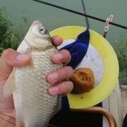 七星漂釣魚技巧分享,七星漂如何釣底及釣浮,建議收藏