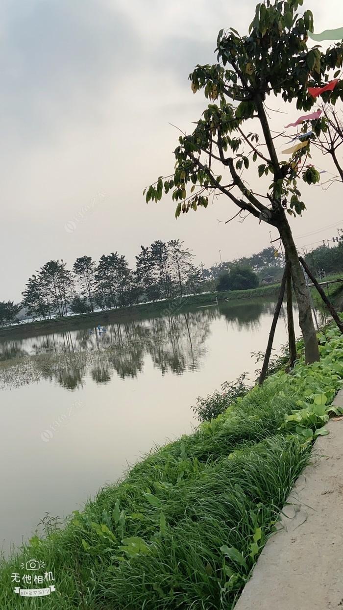 渔乐垂钓园