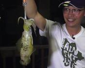 《白条游钓》8个木虾全部挂底,终于在深夜白条4连中大鱿鱼