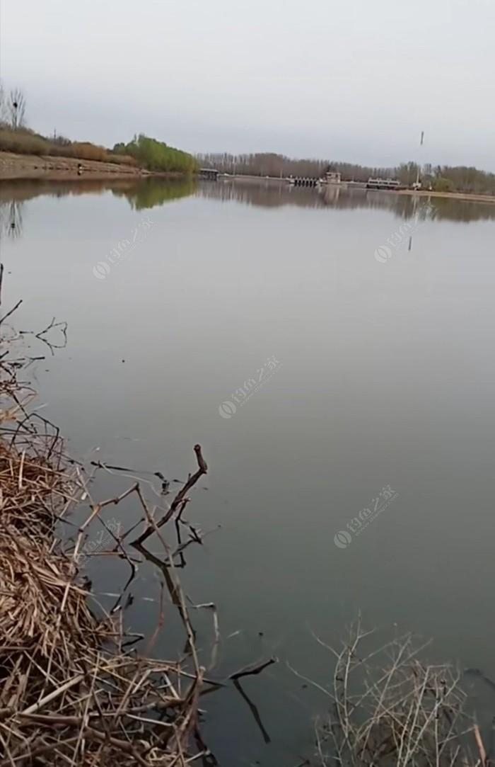 北运河(北辛庄段)