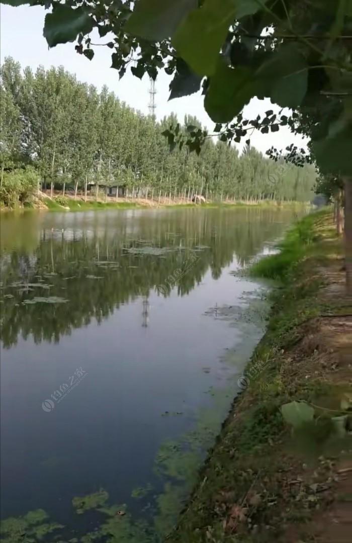 鲍丘河大角甸段