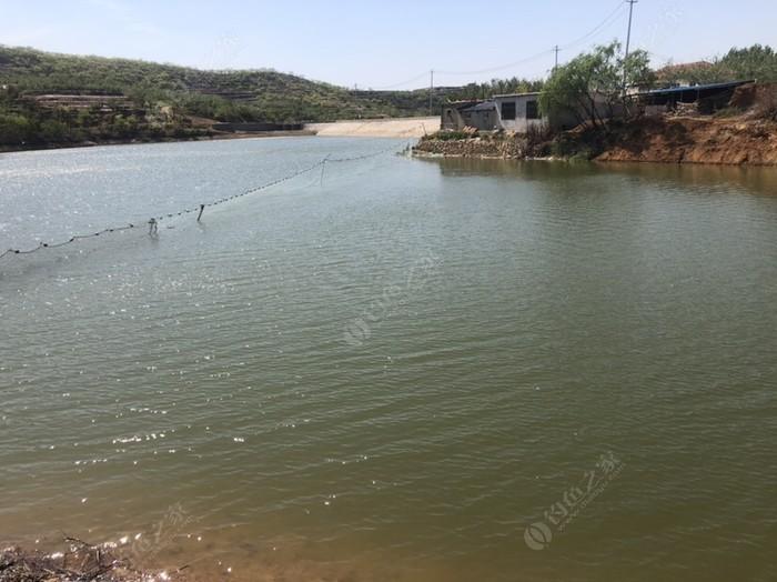 黑溝村釣魚基地