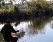 《戶外野釣視頻》風景優美的野河釣魚,選個三岔口處看魚口如何!
