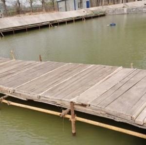 李庄村养殖垂钓基地
