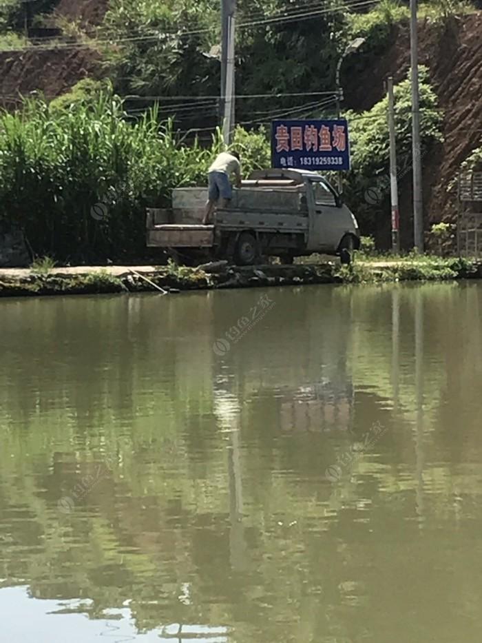 帝豪钓鱼场