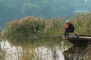 春末釣鯉魚,釣位選擇的必備技巧!