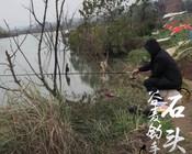 《谷麥釣手石頭》小伙用獨特釣法,連釣十幾條大板鯽!