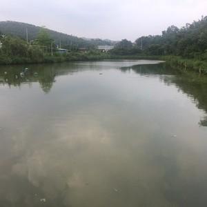 渔乐坊休闲钓鱼场