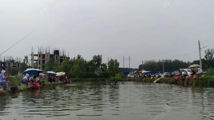 九洲鲤鱼塘