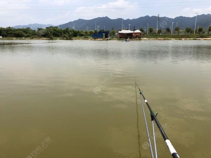 老王钓鱼场