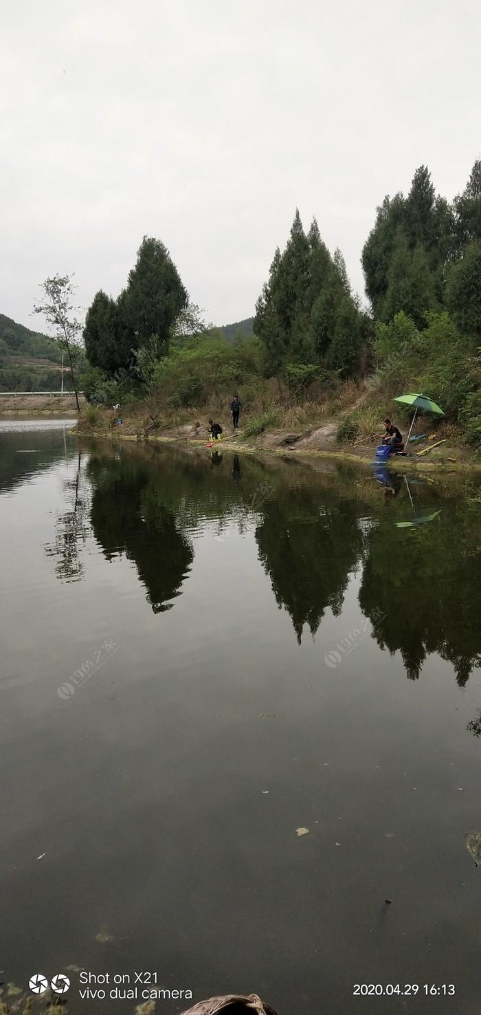 紅鋒水庫釣場