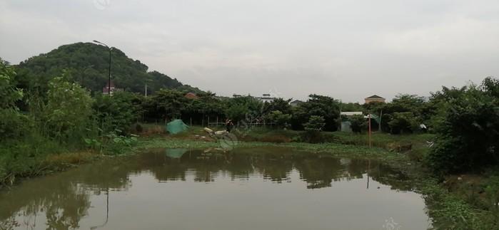 杭州鸿泰农业休闲钓场