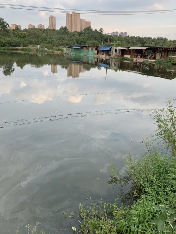 王哥钓鱼场