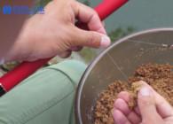 《钓鱼百科》第205集 怎么使用原塘颗粒?