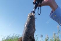 和路亞釣友分享雷強釣法中的雷蛙使用~
