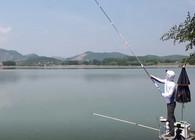 《白条游钓》滁州醉翁亭,突遇大鱼断钩,坚持两天终上怪鱼