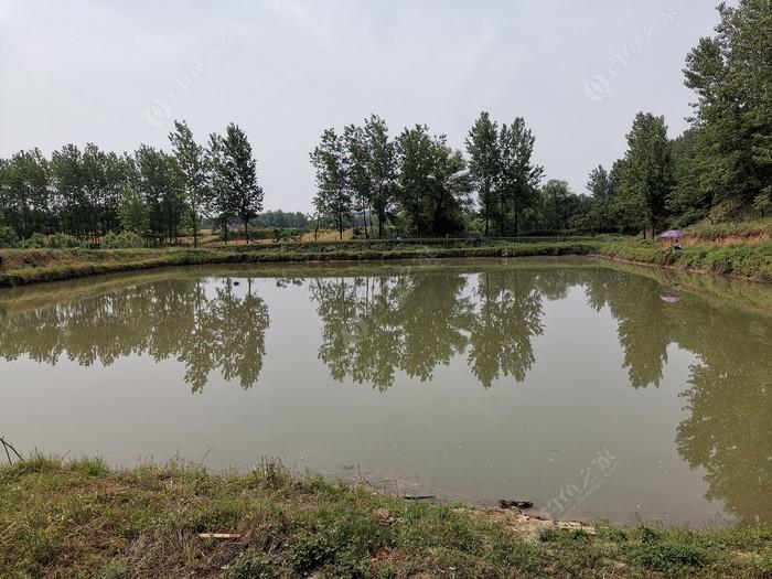 悅宏垂釣園