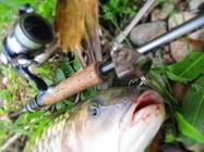 路亞釣魚,防止擬餌掛底的技巧!