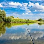 秋季钓鱼,到底是钓浅水还是钓深水?