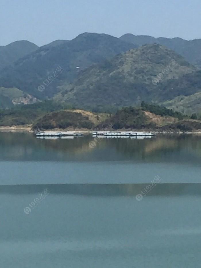 大畈河钓鱼场