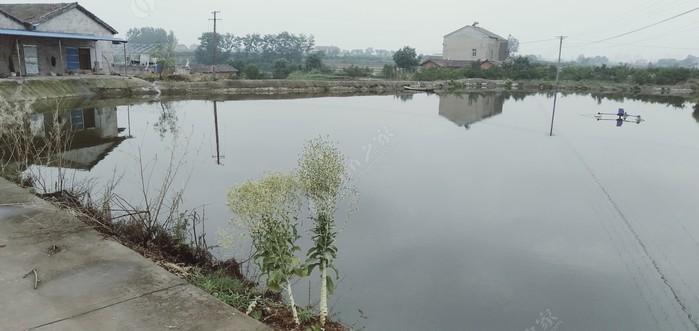 刘师傅钓鱼场
