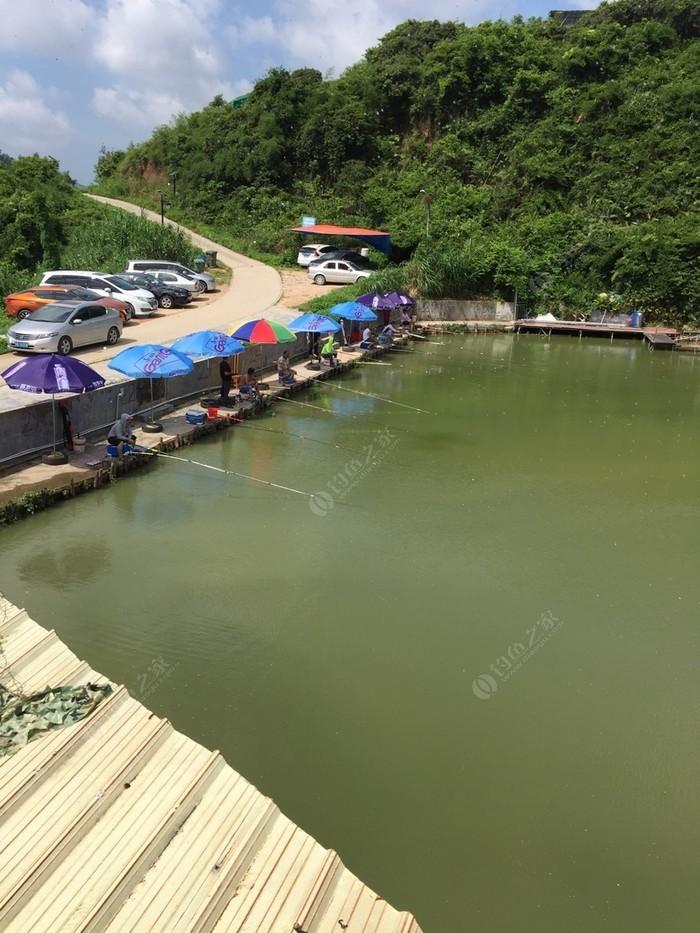 农趣谷山水钓鱼场