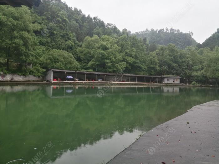 八月湖鱼庄