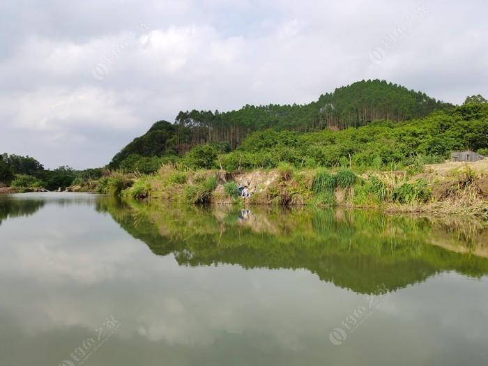 原生态野钓场