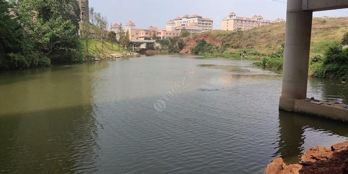 丽水琴湾河